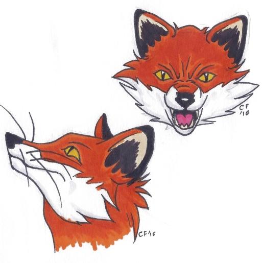 Fox profiles